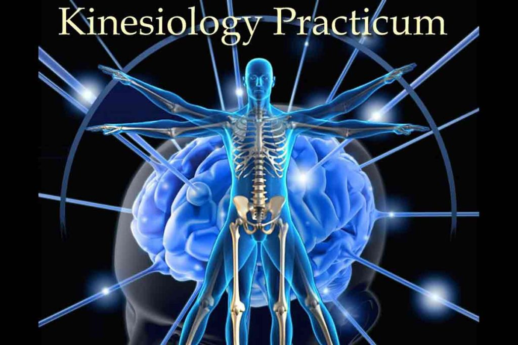 Kineziologiya-praktikum-1024x683